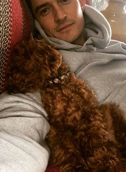 orlando bloom with puppy